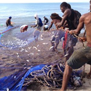 A fishing south coast Jamaica