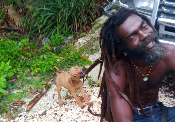 Puppy Locks Rappa Rasta